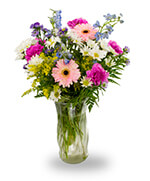 Mixed summery flowers